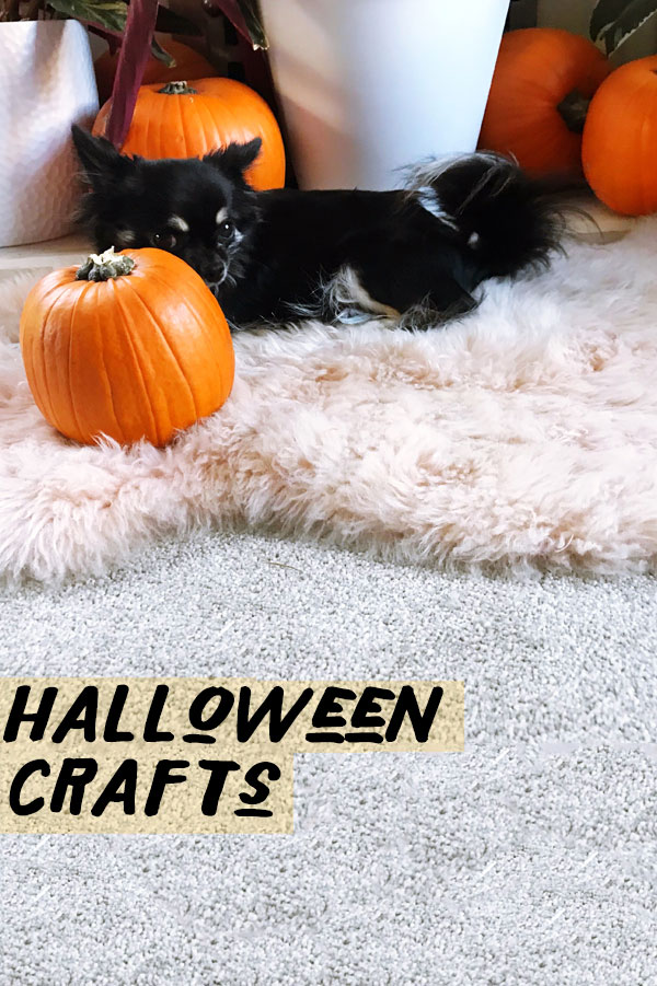 Add your own stamp on this years Halloween Party Bags, a great idea if you want to have a budget-friendly October 31st! ?