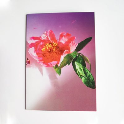 Flora greetings card
