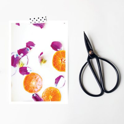 Fresh and Fruity Postcard