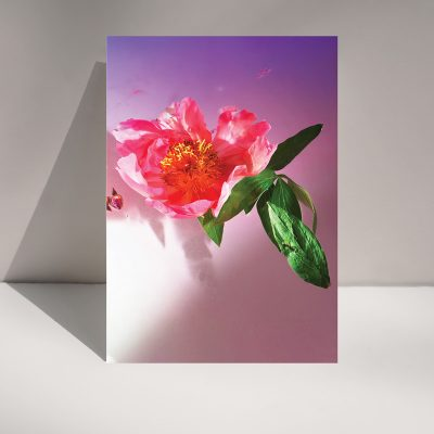 Flora - Greetings Card